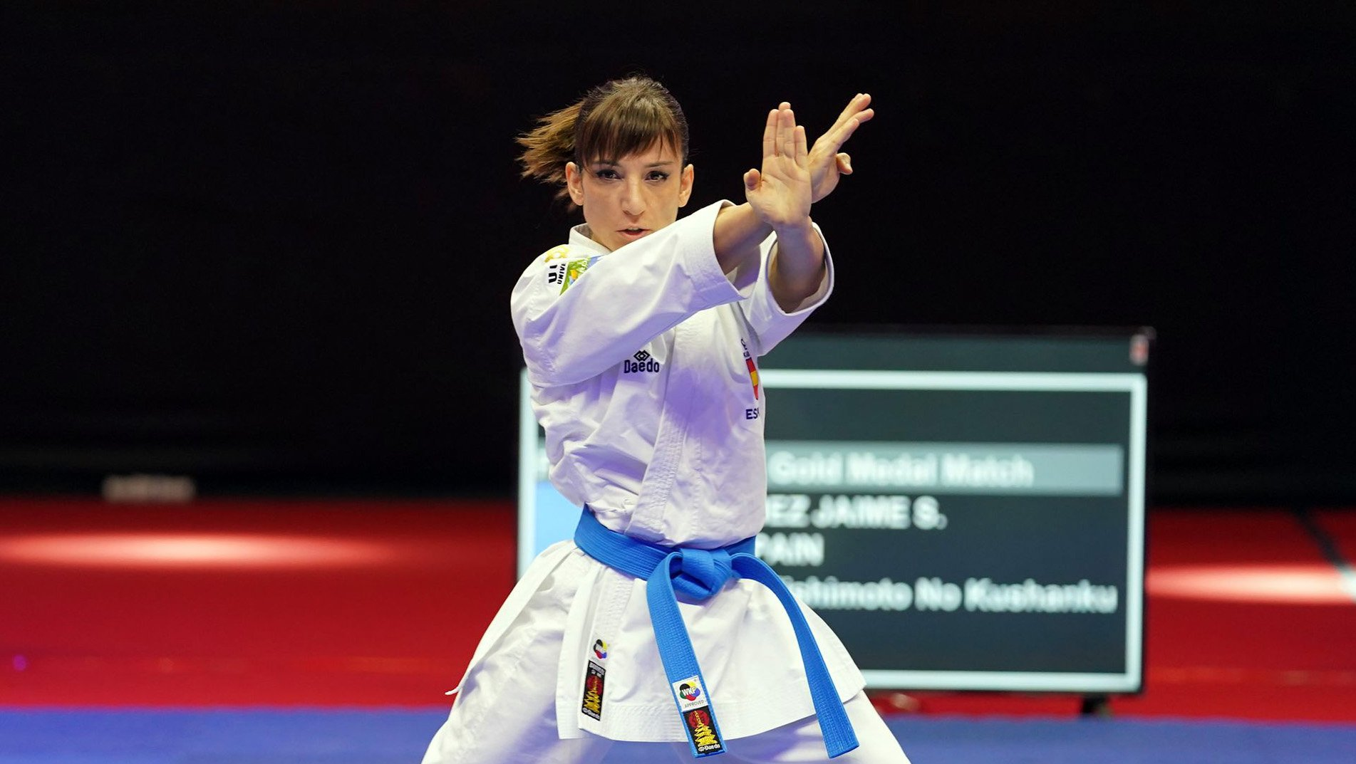 Who is leading Karate 1-Premier League standings?